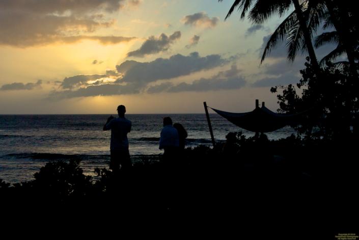 Watching turtles at sunset