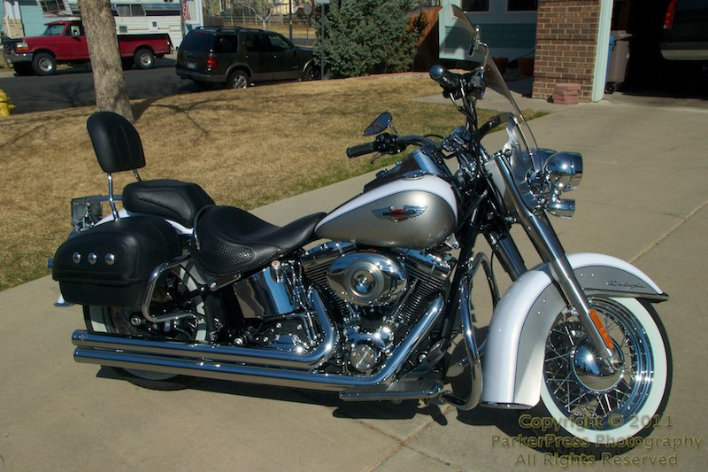 New Harley FLSTN