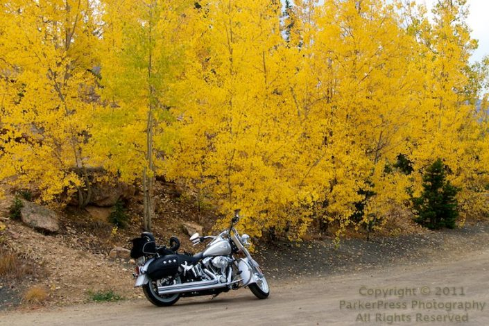 Taking the Softail out for a Fall Colors trip