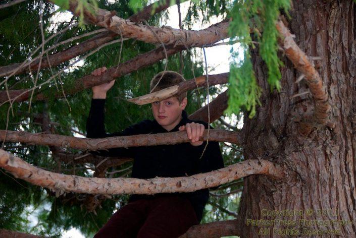 Matt relaxing in a tree